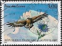 L'aigle royal et le chardon bleu Parc des écrins