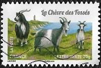 La chèvre des fossés