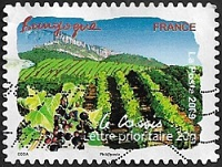 Bourgogne - Le cassis