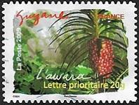Guyane - L'awara