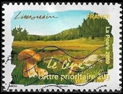 La flore - Limousin - Le cèpe