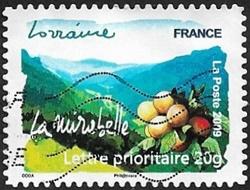 Lorraine - La mirabelle
