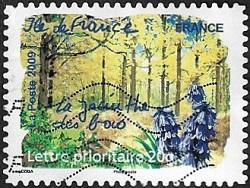 Ile-de-France - La jacinthe des bois